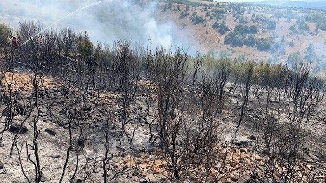 Denizli'de ormanlık alanda ki yangında 50 hektar zarar gördü