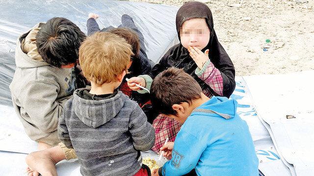 BAE-PKK hattı çocuk ticareti: Zayed Suriye'den organ ticareti için binlerce çocuğu kaçırdı
