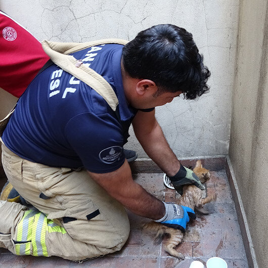Sultangazide su giderine sıkışan kediyi itfaiye ekipleri kurtardı