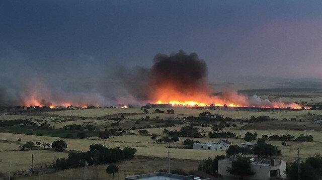Diyarbakır'daki yangında yüzlerce dönüm arazi küle döndü