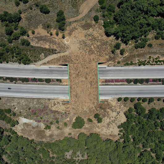 Yaban hayvanları korumak için İzmir-Çeşme yoluna yapılan ekolojik köprü tamamlandı