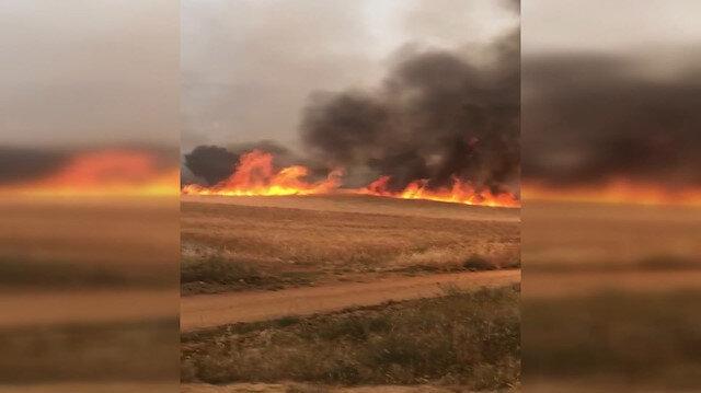 Ürün hasadı sırasında çıkan yangında mahsuller kül oldu
