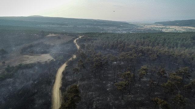 Gelibolu'daki yangının boyutu gün ağırınca ortaya çıktı