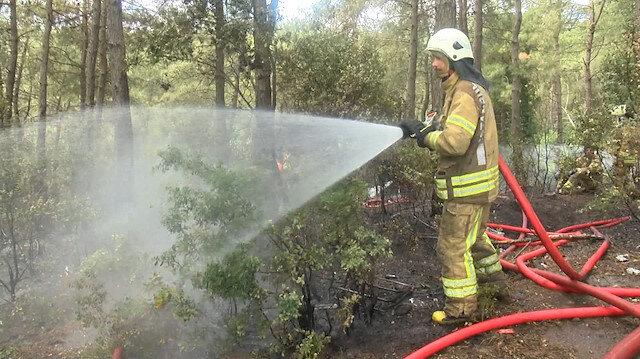 Son dakika: İstanbul Sarıyer'de ormanlık alanda yangın çıktı