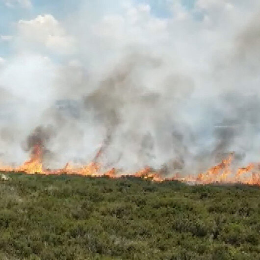 Tuzlada otluk alanda yangın çıktı