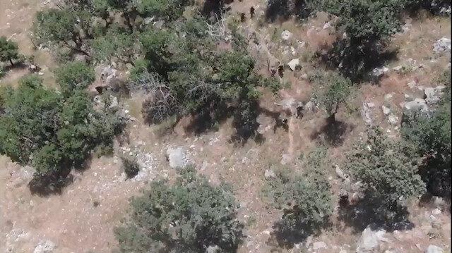 Pençe Kaplan Operasyonunda 3 terörist daha SİHA'larla etkisiz hale getirildi