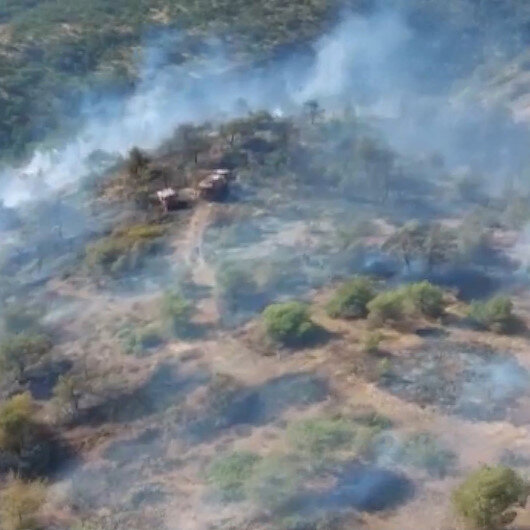 Gaziantepte orman yangını: 2 hektarlık kızılçam ormanı zarar gördü