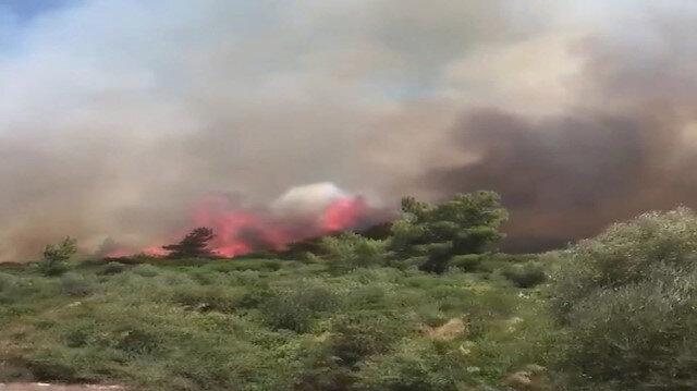 İzmir Sığacık koyu mevkisinde korkutan orman yangını