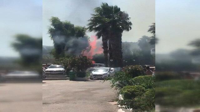 Bodrum Bitez'de ağaçlık alanda yangın çıktı