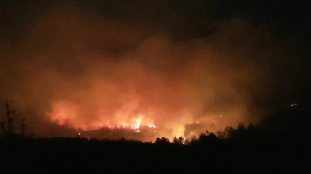 Manavgat'ta orman yangını: Çok sayıda ekip sevk edildi