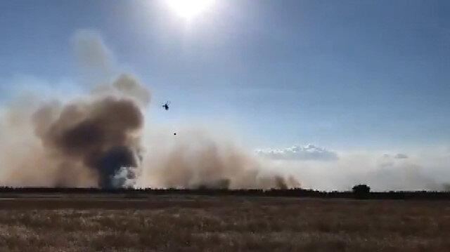 Edirne'nin Meriç ilçesindeki ormanlık alanda yangın çıktı