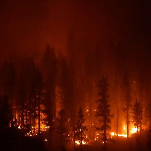 ABD yangına teslim oldu: Çalılarla başlayan yangın 40 bin metrekarelik alanı küle çevirdi