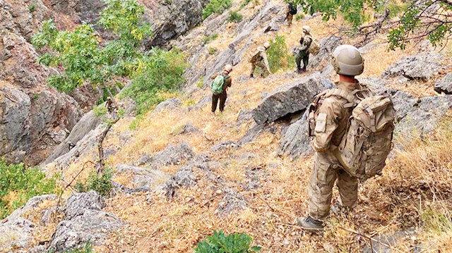 PKK'yı 'Yıldırım' çarptı: Mehmetçik hainlerin inlerine giriyor