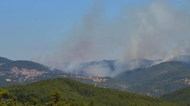 Bakan Pakdemirli'den orman yangınlarına dair açıklama