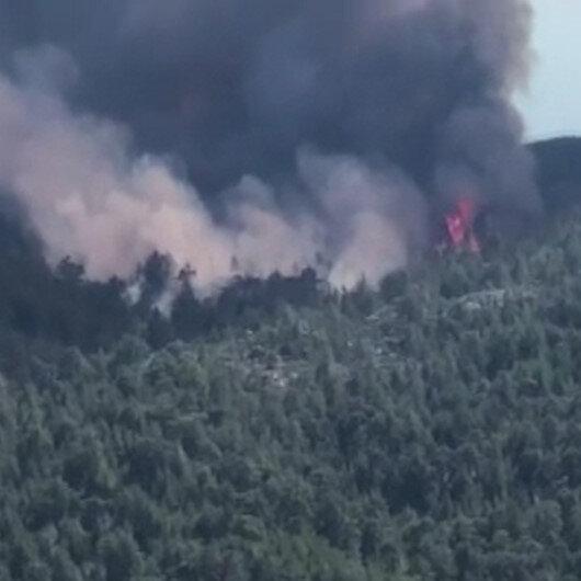 Aydın'daki orman yangını büyüyor