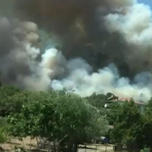 İzmirde bir orman yangını daha çıktı