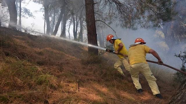 Bakan Pakdemirli duyurudu: İzmir'deki yangınla ilgili bir kişi gözaltında