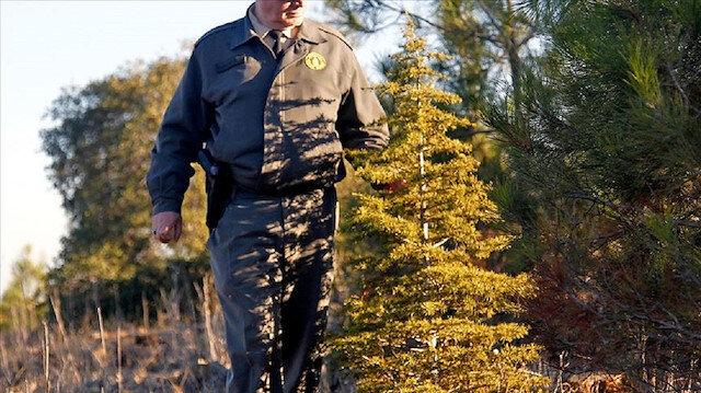 Orman Genel Müdürlüğü 700 işçi alacak