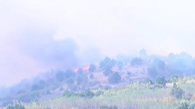 Edirne-Bulgaristan sınırında orman yangını çıktı