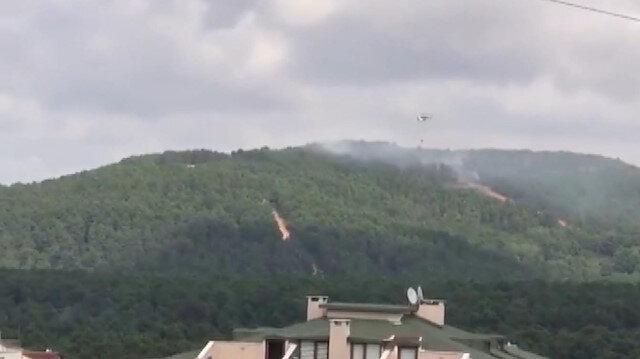 Aydos Ormanı'nda yangın paniği