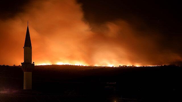 Bulgaristan'daki orman yangını Türkiye sınırına dayandı