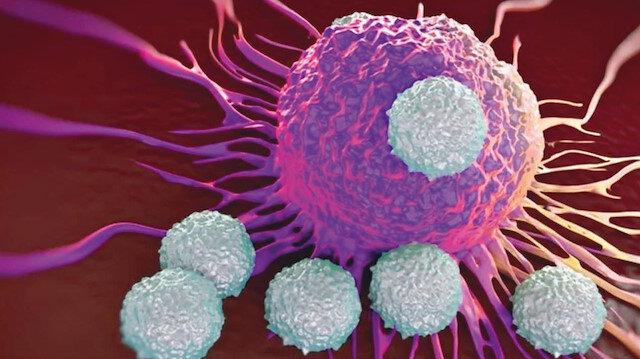 Koronavirüs tedavisinde yeni umut: Kanda kalabilen T hücresi Kovid-19'u tanıyor