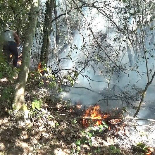 Düzcede fındıklıkta başlayan yangın ormana sıçradı
