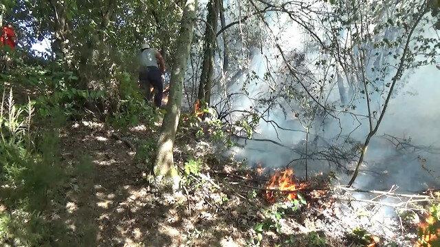 Düzce'de fındıklıkta başlayan yangın ormana sıçradı
