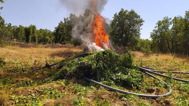 Bakan Soylu açıkladı: Diyarbakır'da zehir tacirlerine ağır darbe