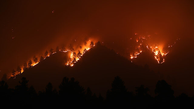 Adana Pozantı'daki orman yangını devam ediyor