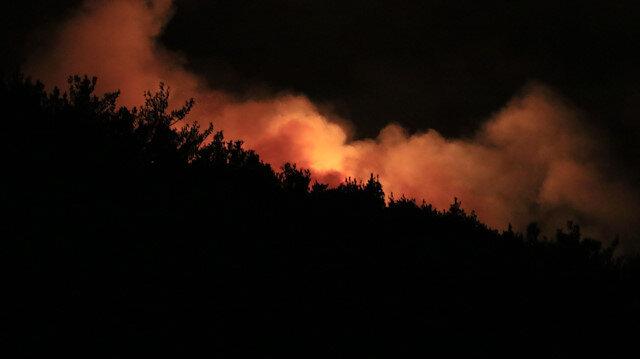 Adana Pozantı'daki orman yangını gece de devam etti