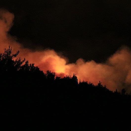 Adana Pozantıdaki orman yangını gece de devam etti