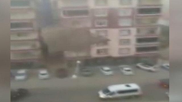 Yozgat'ta şiddetli rüzgar çatıyı böyle uçurdu