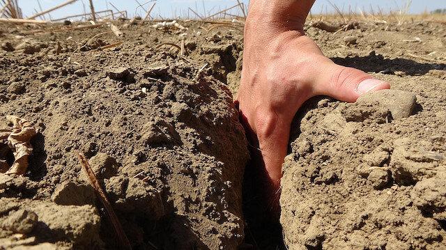 Edirne'de kuraklık toprakları çatlattı, ekim yapamayan çiftçi: Kuru tarımla üretim yapmak zorunda kalacağız
