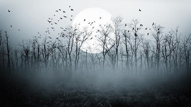 Kötülükle savaşta şiir ve roman