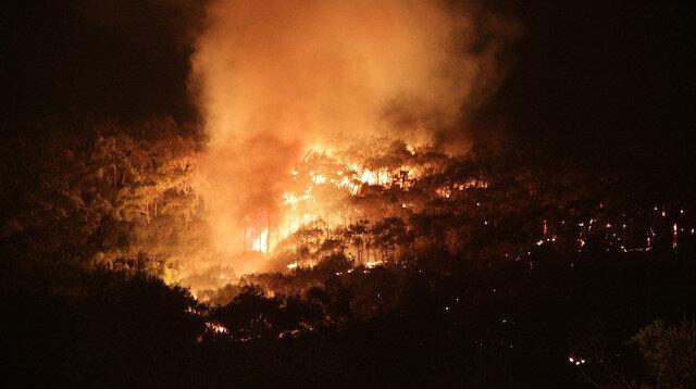 Balıkesir Ayvalık'taki orman yangını kısmen kontrol altına alındı