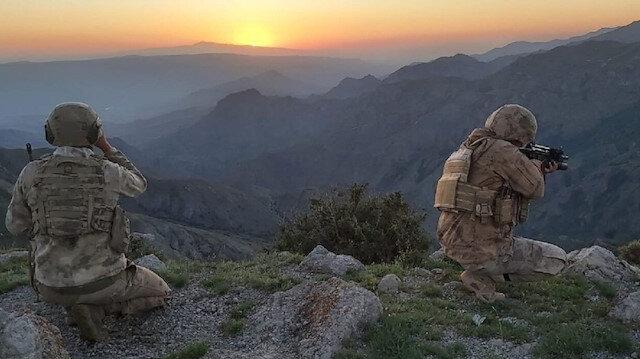 Listeye bir çizik daha: Yıldırım-3 Iğdır Operasyonu'nda gri kategoride aranan terörist ölü ele geçirildi