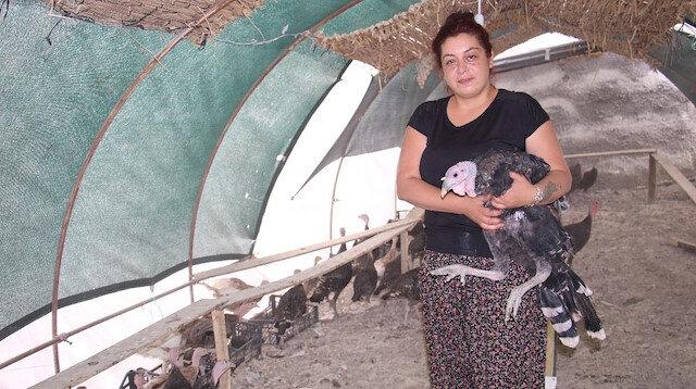 Elazığ'da üniversite mezunu kadın kendi çiftliğini kurdu: Bir yılda 200 bin adet tavuk ve hindi satışı yaptı