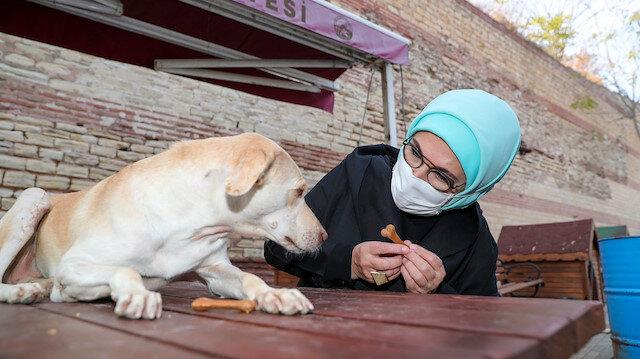 """Emine Erdoğan, """"Leblebi"""" isimli engelli köpeği sahiplendi"""