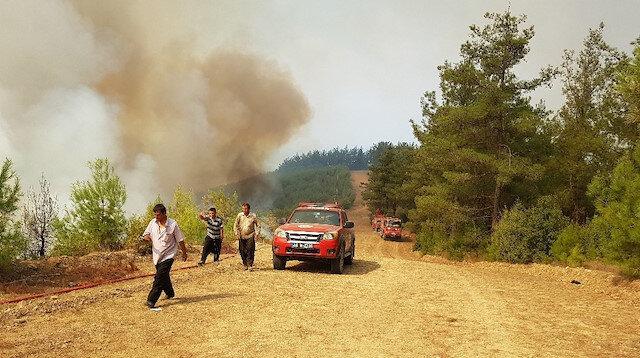 Hatay'ın ardından Kahramanmaraş'ta da 4 ayrı noktada yangın çıktı