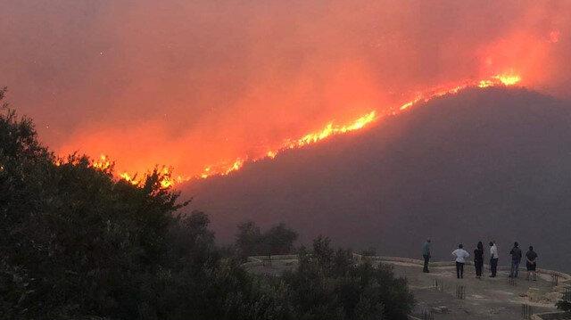 Suriye'deki orman yangınları kontrol altına alınamıyor