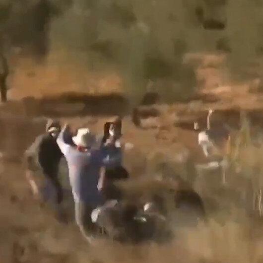 Filistinli gençler zeytin bahçelerine giren işgalci İsraillileri yaka paça attı