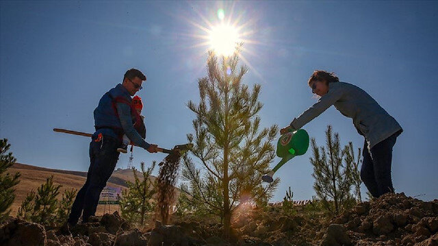 Milli Ağaçlandırma Günü kapsamında herkese ücretsiz fidan verilecek