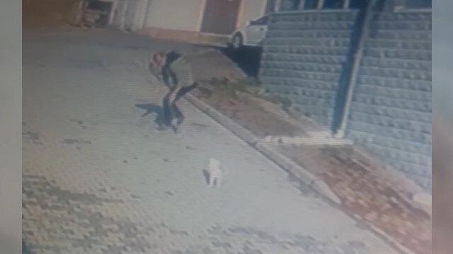Köpeği önce sevdi, sonra kaçırdı; o anlar güvenlik kameralarına yansıdı
