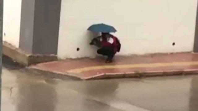 Antalya'da iç ısıtan görüntüler: Islanmasın diye şemsiyesiyle sokak köpeğinin başında bekledi