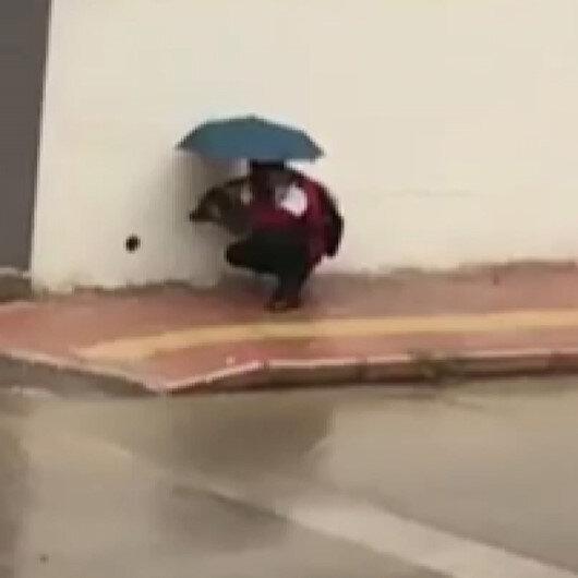 Antalyada iç ısıtan görüntüler: Islanmasın diye şemsiyesiyle sokak köpeğinin başında bekledi