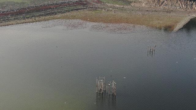 İstanbul kritik seviyede: Son 5 yılın en düşük seviyesinde olan Alibeyköy Barajı'nda eski elektrik direkleri ortaya çıktı