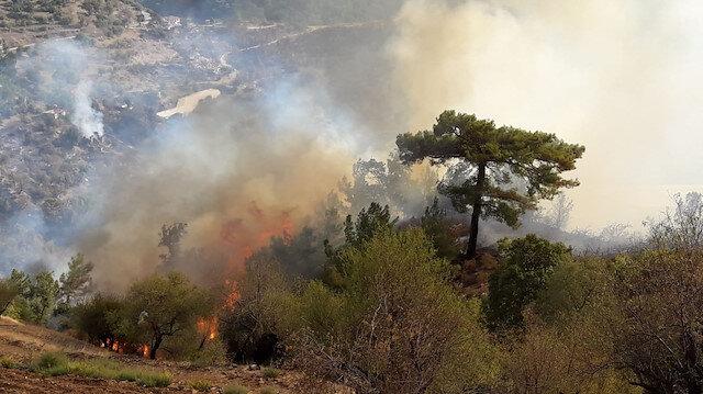 Mersin'de çıkan orman yangınına müdahale ediliyor: 50 ev boşaltıldı, karayolu trafiğe kapatıldı