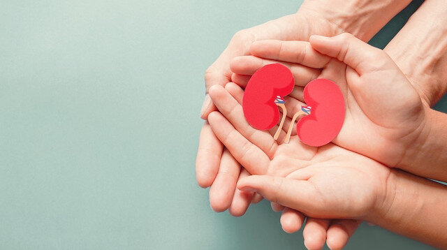 Beyin ölümü gerçekleşmiş her 4 kişiden yalnızca birinin organları bağışlanıyor