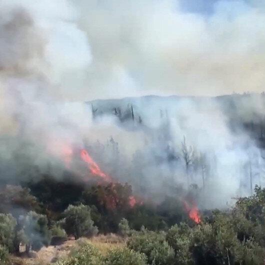 Antalyada korkutan yangın: Tarım arazisinde başlayıp ormanlık alana sıçradı